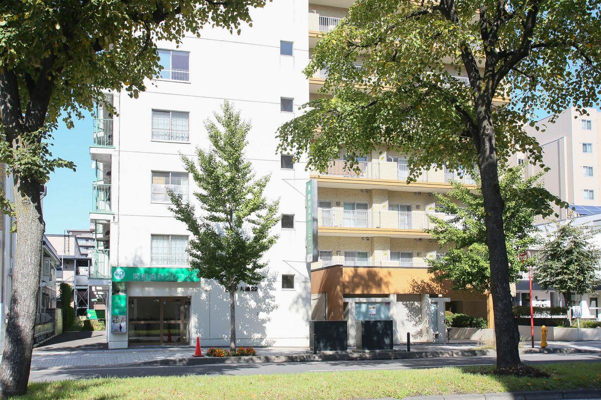 ドエル大通22【円山公園駅徒歩4分!】1Rのメイン写真